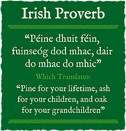 Irish Quotes About Life Glamorous Irish Proverbs And Sayings  World Cultures European
